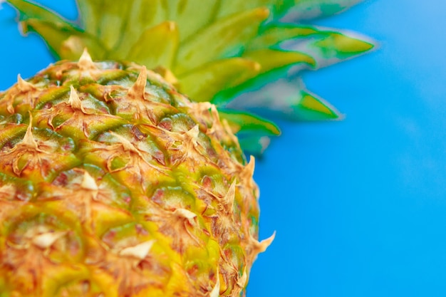 Studio shot of pineapple. tropical fruits are isolated