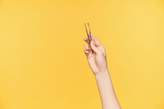 Studio shot delle mani ben curate della giovane femmina mantenendo le pinzette mentre posa su sfondo arancione. la giovane donna si formerà le sopracciglia