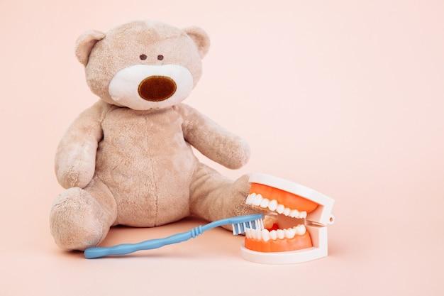 コピースペース付きの歯ブラシでクマのぬいぐるみ。子供の歯科医のテーマ