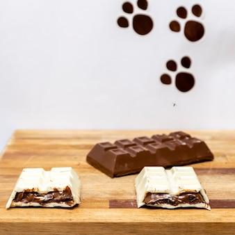 부활절을 위해 장식된 박제 초콜릿 바