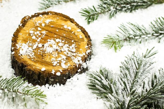 雪とモミの枝の間の切り株
