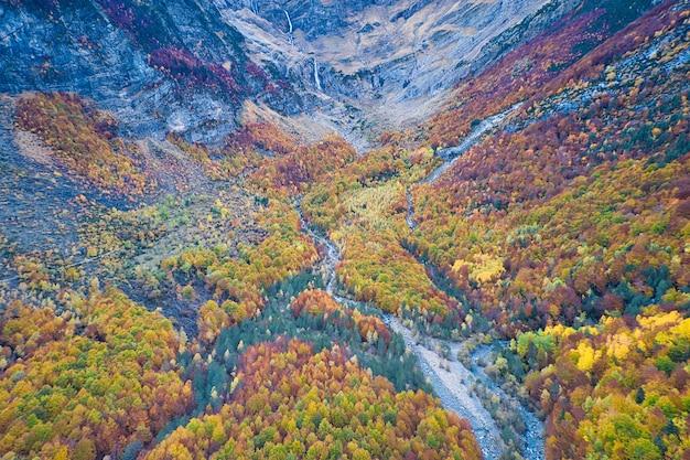 Splendida ripresa aerea di un ambiente forestale in autunno