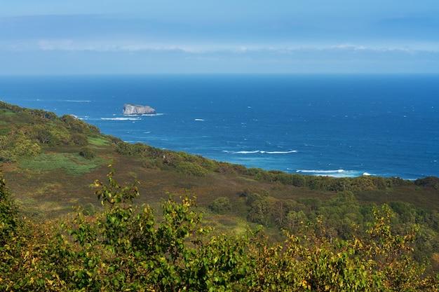 푸른 태평양과 숲이 우거진 해안의 멋진 가을 태평양 해안 바다 경치 파도...
