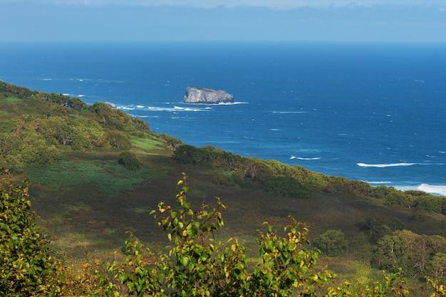 푸른 태평양과 숲이 무성한 해안의 멋진 가을 태평양 해안 바다 경치 파도