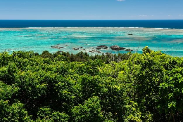 Великолепное светло-зеленое море с коралловыми рифами. скалы в воде и пышная растительность на переднем плане.