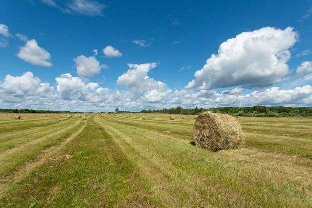 夏の晴れた日に緑のフィールドで干し草のスタックの見事なパノラマ。