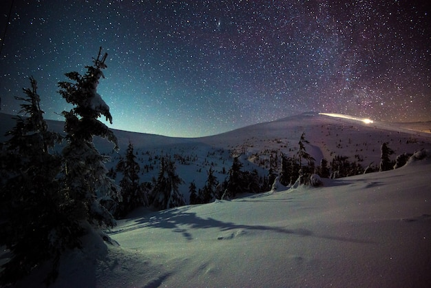 Потрясающий живописный ночной зимний пейзаж