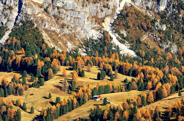 Stunning views of the alpine valley in autumn and small wooden house