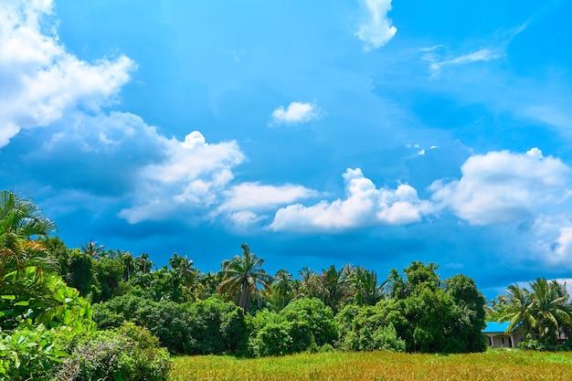 Потрясающий деревенский пейзаж в тропическом нагорье.