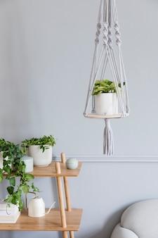 나무 선반, 회색 소파, 디자인 및 우아한 액세서리, 손으로 만든 마크라메 선반 화분 행거가있는 거실의 세련되고 미니멀 한 보헤미안 인테리어. 식물이 많은 식물학 및 가정 장식.
