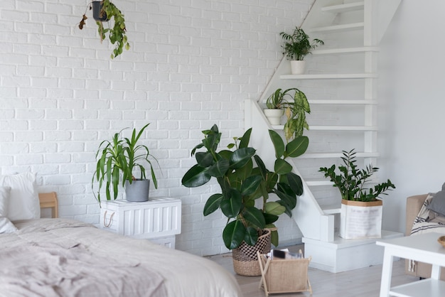 Stylish bedroom interior design with pot plants.