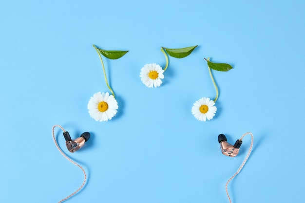Stylish earphone and chamomile flowers in the form of notes on blue background