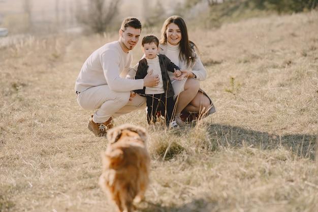 Стильная семья гуляет по солнечному полю