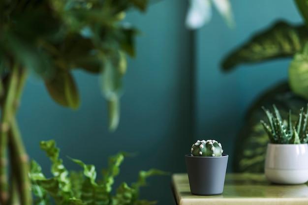 커피 테이블에 디자인과 힙 스터 냄비에 아름다운 식물, 선인장 및 succulents와 세련된 꽃 조성. 자연적인 거실. 녹색 벽. 홈 원예 개념 ..