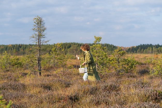 Stylish girl walk on swamp pick cranberries and other seasonal berries having weekend or vacation