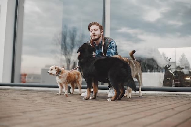 Ragazzo alla moda che gioca con i cani. uomo in città d'autunno.