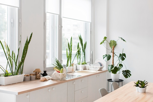 Stylish minimalistic kitchen with plants