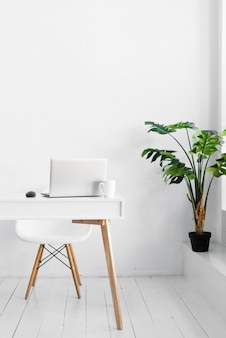 Stylish nordic style desk and plant