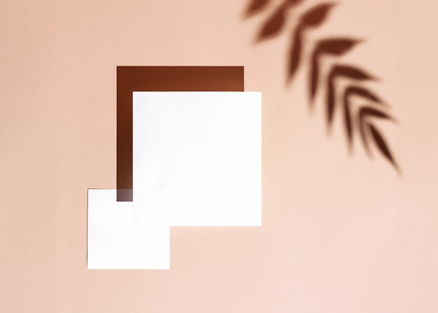 パステルベージュの背景に2枚の正方形の紙のカードとスタイリッシュな夏の背景。熱帯の枝のぼやけた影と日光の下で創造的な最小限の概念。