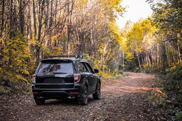 Subaru forester движется по дороге в осеннем лесу