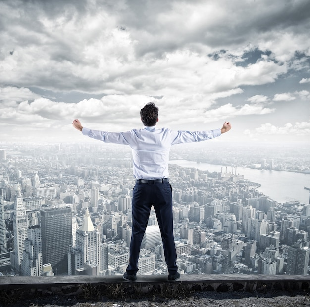 Success businessman at the top of business career