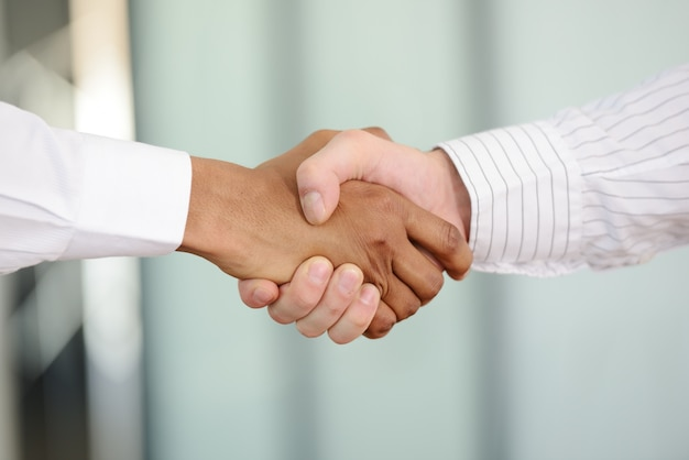 Successful business people hand shaking after great deal