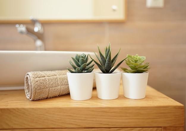 Сочные цветы стоят в ванной в качестве украшения. концепция уюта. современная ванная