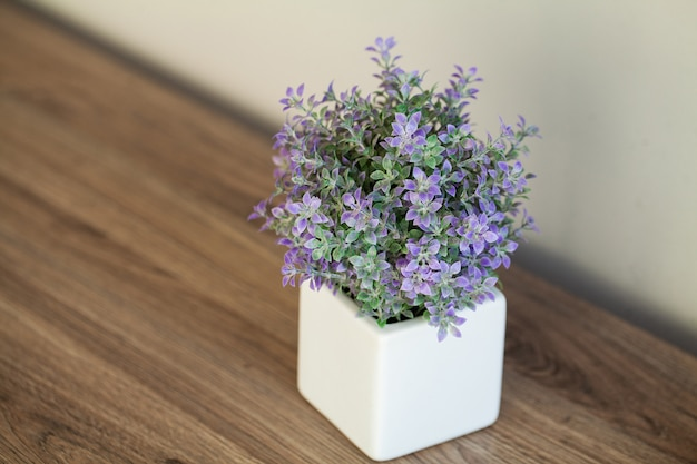 현대적인 욕실의 창 난간에 즙이 많은 식물
