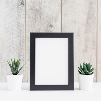 Succulent plant in two white pot with the blank picture frame against wooden wall
