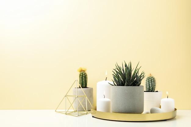 多肉植物と白いテーブルの上のろうそく。観葉植物