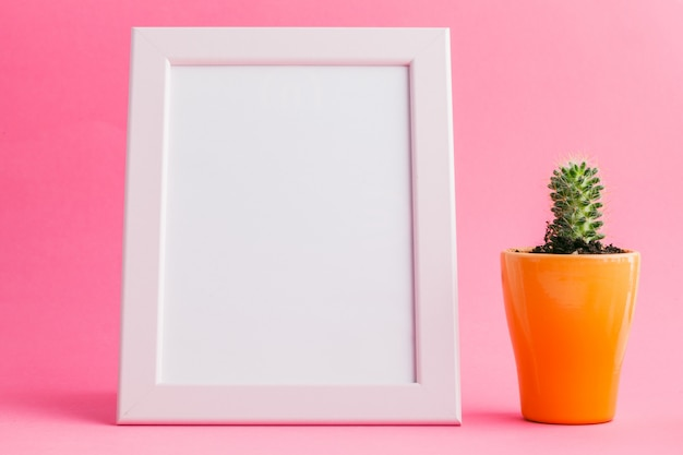 Succulent plants on pastel pink background. flat lay.