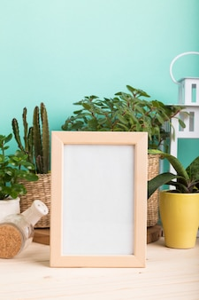 Succulents, house plants in pots and blank photo frame