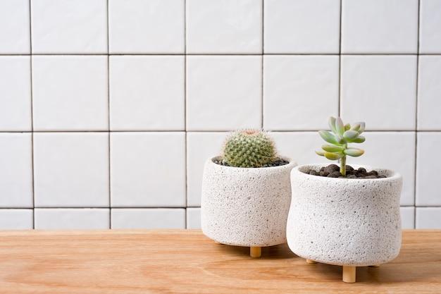 그리드 라인 벽 배경으로 나무 테이블에 냄비에 succulents.