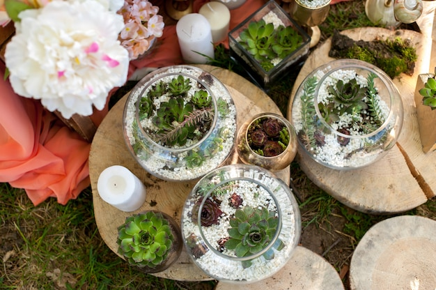 Succulents in weddings interior decoration