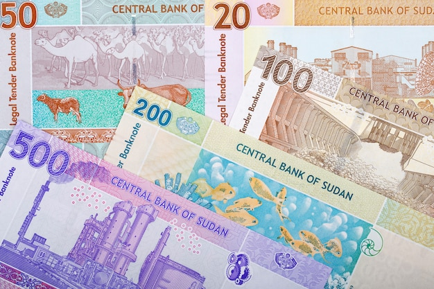 Sudanese money