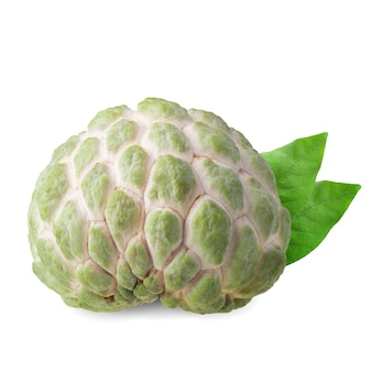 Sugar apple or custard apple isolated on white space.