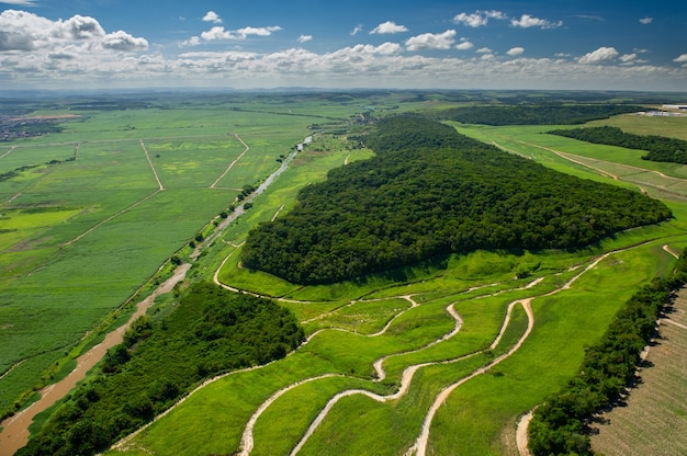 ブラジルのレシフェペルナンブコ近郊のゴイアナにおけるサトウキビ栽培と大西洋岸森林の残骸