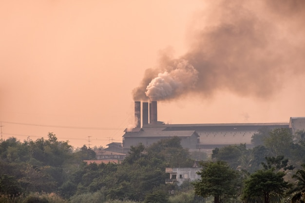 Sugar cane factory is burning with pollution smoke from chimneys