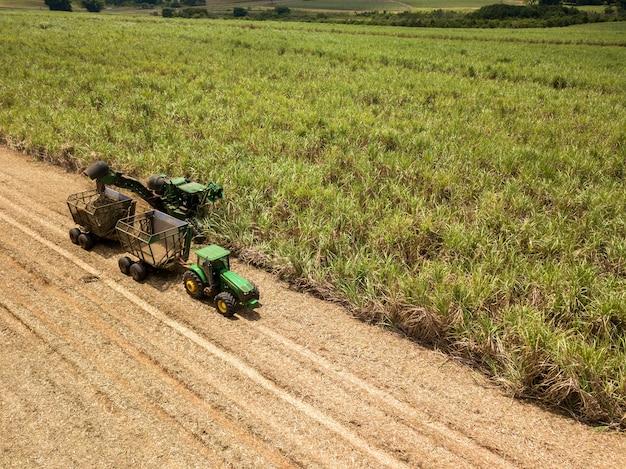サトウキビ-サトウキビ畑のプランテーションで働く収穫機。