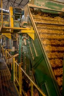Sugar cane line