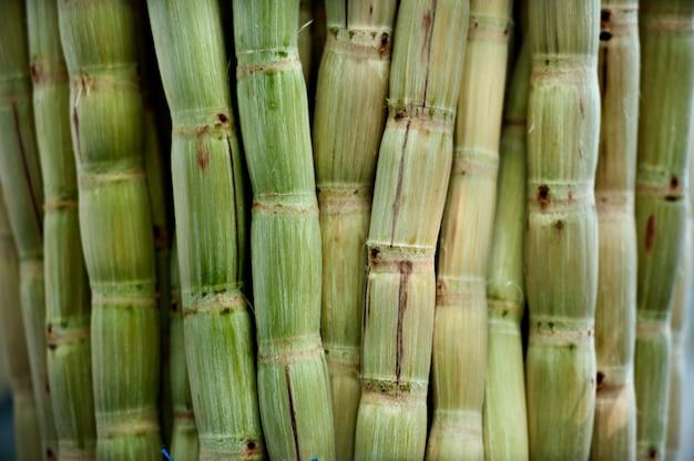 Сахарный тростник очищен