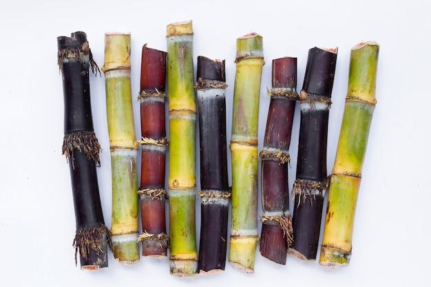 Sugar cane on white background.