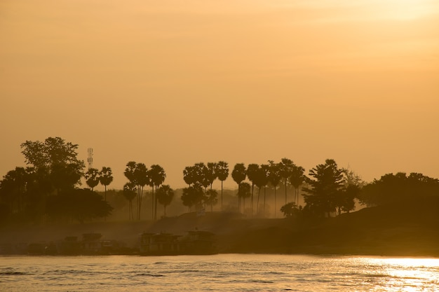 Sugar palm river and sunrise