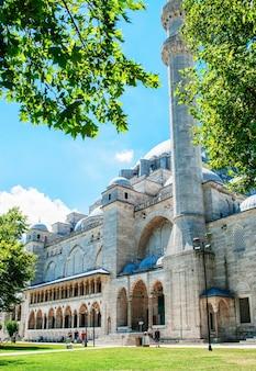 푸른 하늘과 녹색 잎의 배경에 대해 suleymaniye 모스크