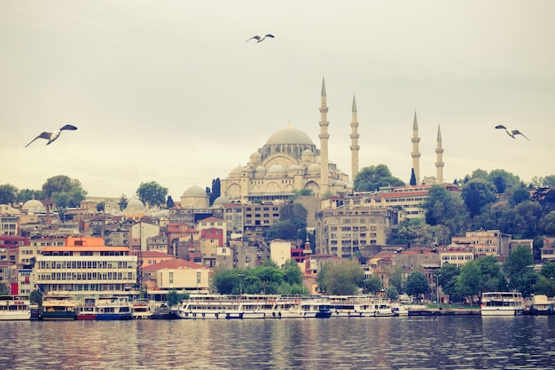 Suleymaniye mosque on the banks of the bosphorus in istanbu
