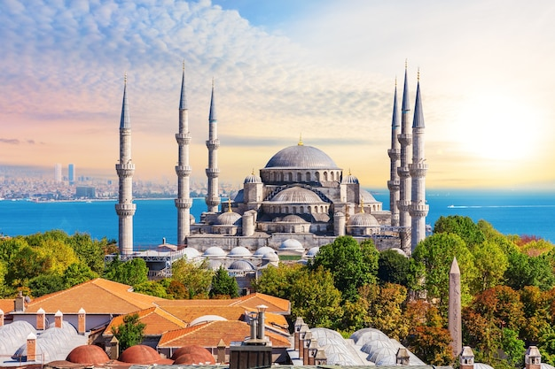 Мечеть султана ахмета в стамбуле, яркий летний вид.