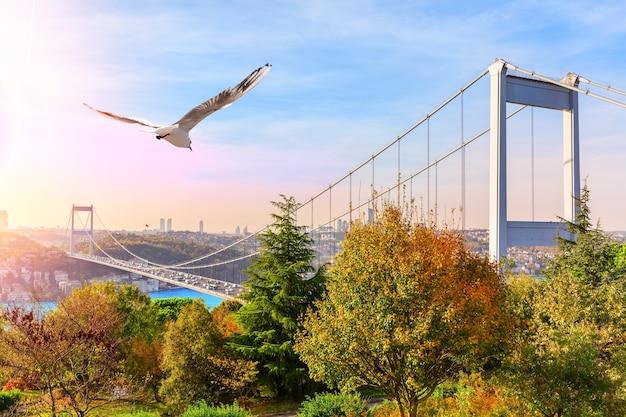 Мост султана фатиха мехмета, вид из парка, стамбул.