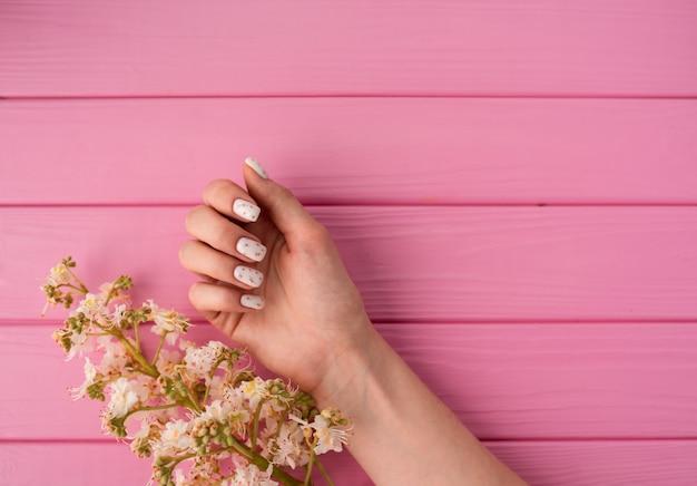 夏の抽象的な背景女性の手のマニキュアは花の花栗を保持します