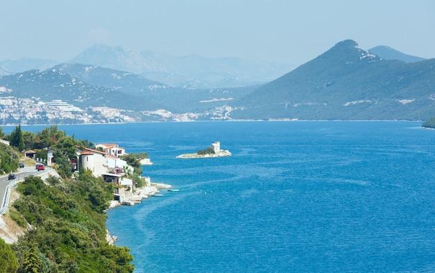 Летний вид на побережье адриатического моря с деревом, чертополохом и камнем впереди (хорватия)
