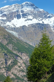 Summer alps mountain plateau (switzerland, near zermatt)
